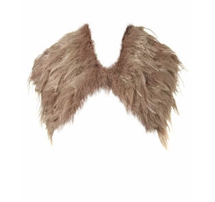 Feather cape 35£