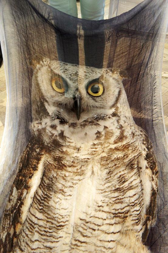 ugle tørklæde stylesnob, owl print scarf, tørklæde med ugle print