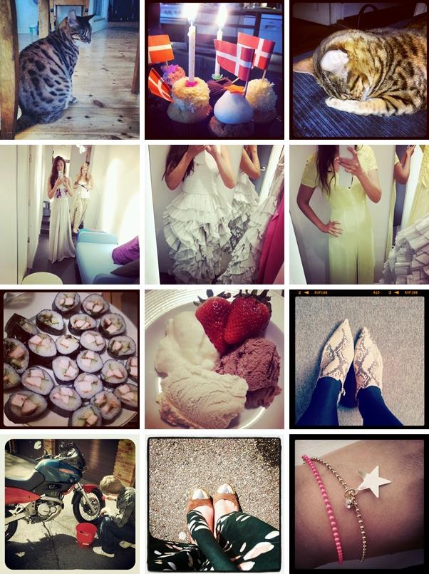 instagram, fashion blog instagram, modeblog instagram, H&M consious collection køb 2012, stjerne armbånd, slangeprint ankelstøvler zara, hjemmelavet sushi, bengal kat