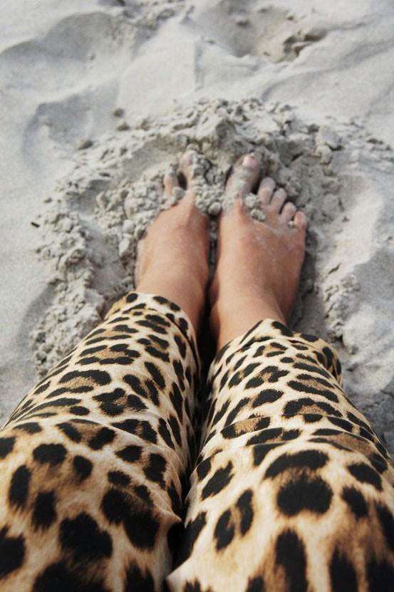 zara leopard bukser, zara leopard pants