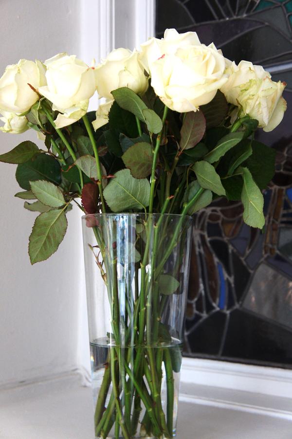 hvide roser, whites roses