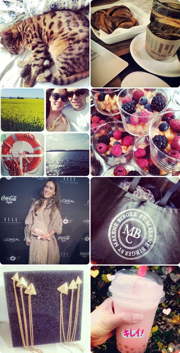 pinse, instagram, bubble tea københavn, z¨ol øreringe, orø, bengal kat, meyes kanelsnurrer, meyes, elle style awards 2013